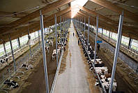 Строительство,ремонт и реконструкция ферм КРС,свиноферм.пром строений ю