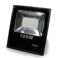 Прожектор LED SMD Fl-100W