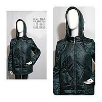 Женская куртка весна-осень, цвет бутылка  большие размеры  48-58