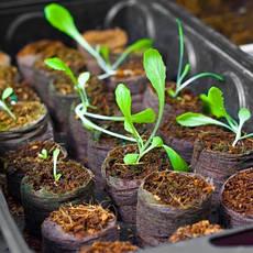 Субстрати, компости для рослин