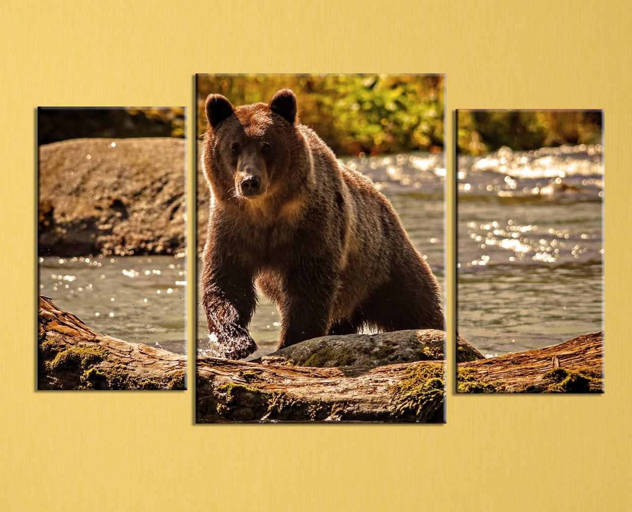 """Модульная картина """"Медведь """""""