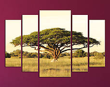 "Модульная картина ""Африканская акация"""