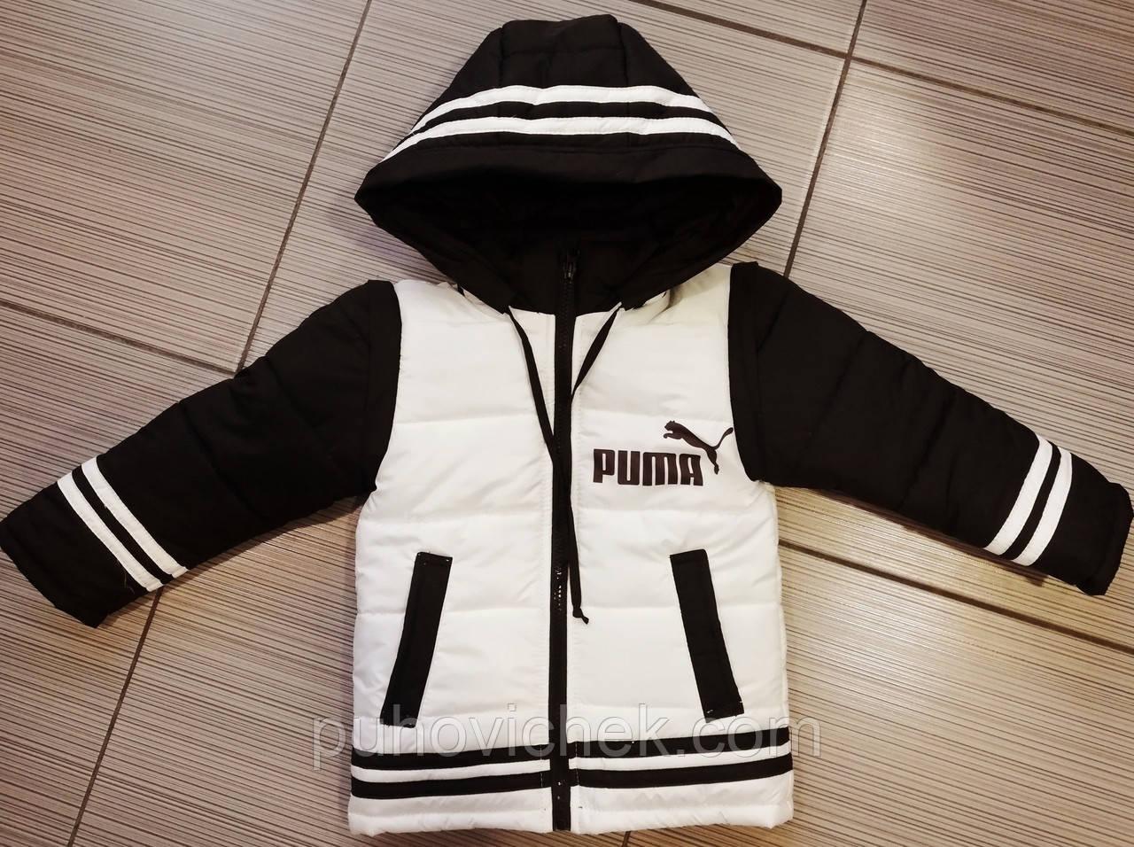 Спортивные курточки для мальчиков стильные от производителя