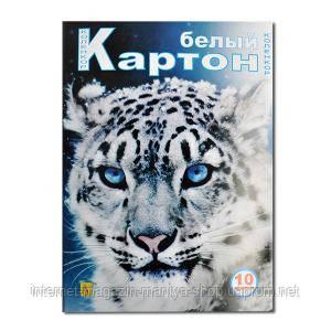 Белый картон А4 10 листов «Коленкор»