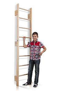 Акція! Дитяча дерев'яна Шведська стінка Тінейджер Teenager 0-220 SportBaby