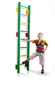 Детская деревянная Шведская стенка Тинейджер  - Teenager-0-220 (green)  SportBaby