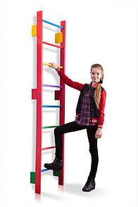 Акция! Детская деревянная шведская стенка Спортивный уголок Тинейджер Teenager-0-220 (barby)  SportBaby