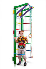 Акція! Дитяча дерев'яна Шведська стінка Тінейджер Спортивний куточок Teenager-2-220 (green) SportBaby