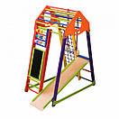 Акция! Деревянный Детский спортивный комплекс BambinoWood Color Plus SportBaby, фото 4