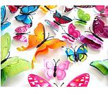 Бабочки на магните разноцветные - в наборе 12шт., пластик, так же есть 2-х сторонний скотч, фото 3