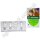 Advantage капли для котов и декоративных кроликов от 4 до 8 кг, фото 2