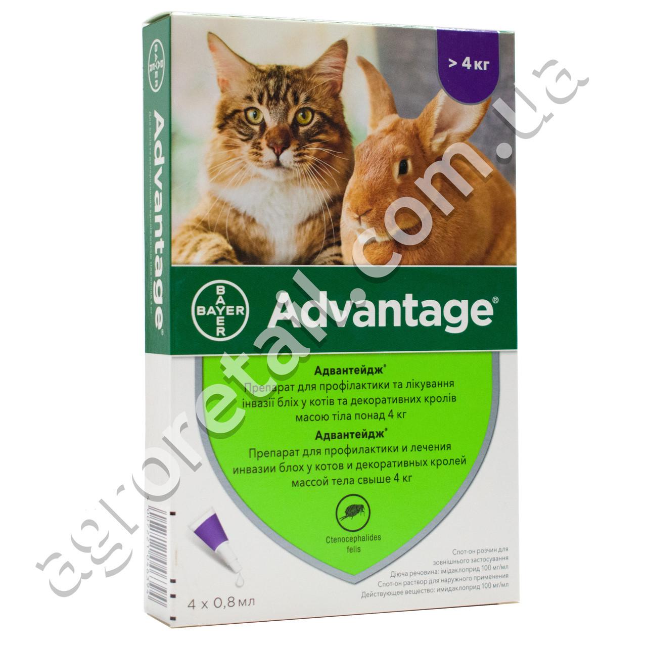 Advantage капли для котов и декоративных кроликов от 4 до 8 кг