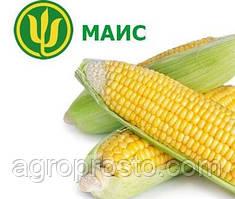 Семена кукурузы Платинум МАИС (ФАО 340)