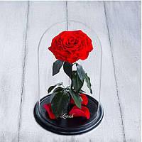 Стабилизированная роза в колбе Lerosh - Lux 33 см, раскрытая Красная - 138946
