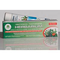 Зубная паста с зеленой глиной и экстрактами лекарственных трав Natura House Herbarium Toothpaste