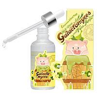Сыворотка со 100% экстрактом галактомисисаElizaveccaMilky Piggy Galactomyces Ferment Filtrate 100%