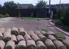 Рулонный газон с.Княжичи 2