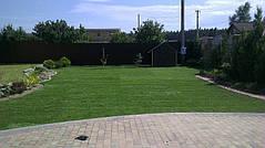 Рулонный газон с.Княжичи 4