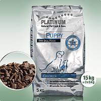 Сухой полнорационный корм для щенков и молодых собак Platinum со вкусом Курицы 15 кг