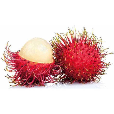 Рамбутан фрукт, фото 2