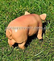 Садовая фигура Свинья сидячая и Кабанчик малый, фото 3