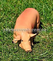 Садовая фигура Свинья сидячая и Кабанчик малый, фото 2