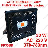 Фито прожектор Bridgelux 30Вт 220В FP30BR