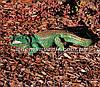 Садовая фигура Аллигатор и Аллигатор малый, фото 4