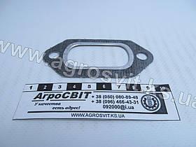 Прокладка выпускного коллектора Д-144, Д37М-1008170Б