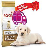 Корм Royal Canin Labrador Retriever Junior Роял Канін Лабрадор ретривер Юніор 12кг