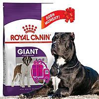 Корм Royal Canin Giant Adult Роял Канін Джайнт Едалт для собак від 18месяцев 15кг