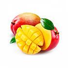 Пюре из манго RAVIFRUIT MANGO в тетрапаке 1кг, фото 2
