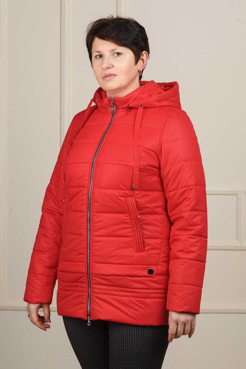 Куртка Мирта цвет красная