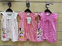 Пісочники для дівчаток оптом, розміри 68-86, Disney, арт. 91027
