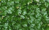 """Декоративное зеленое покрытие  """"Темный вьюнок"""" 100х300 см."""
