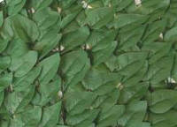 """Декоративное зеленое покрытие """"Листья"""" 100х200 см."""