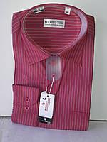 Рубашка мужская Ferrero Gizzi vd-0012 коралловая в полоску классическая с длинным рукавом