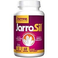 Кремний (Silica), Jarrow Formulas, 5 мг, 60 капсул