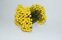 Калина жёлтая лакированная, соцветие из 50 ягод, диаметр ягоды 8 мм