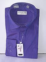 Рубашка мужская Ferrero Gizzi vd-0015 фиолетовая в полоску классическая с длинным рукавом