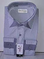Рубашка мужская Ferrero Gizzi vd-0018 светло-серая в полоску комбинированная классическая с длинным рукавом