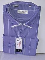 Рубашка мужская Ferrero Gizzi vd-0020 фиолетовая в полоску комбинированная классическая с длинным рукавом