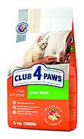 Клуб 4 лапы Premium для котят с курицей, 5 кг