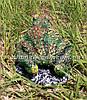 Садовая фигура Грибы Рыжики и Жаба болотная, фото 6