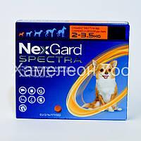 Нексгард Спектра (NexGard Spectra) 2-3,5 кг таблетки от блох, клещей и глистов для собак 1 таблетка