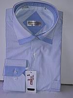 Рубашка мужская Ferrero Gizzi vd-0022 голубая в полоску комбинированная с длинным рукавом