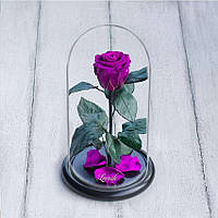 Стабилизированная роза в колбе Lerosh - Mini 27 см, Фиолетовая - 138912