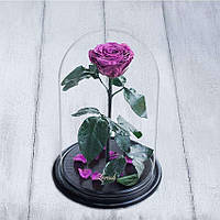 Стабилизированная роза в колбе Lerosh - Premium 33 см, Сливовая - 138937