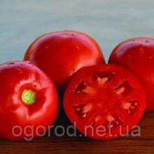 Дебют F1 10 шт насіння томату низькорослого Seminis Голландія