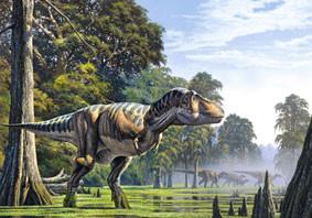 Пазлы Castorland Динозавр 51946, 500 элементов